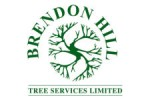 Brendon Hill Tree Services Ltd.